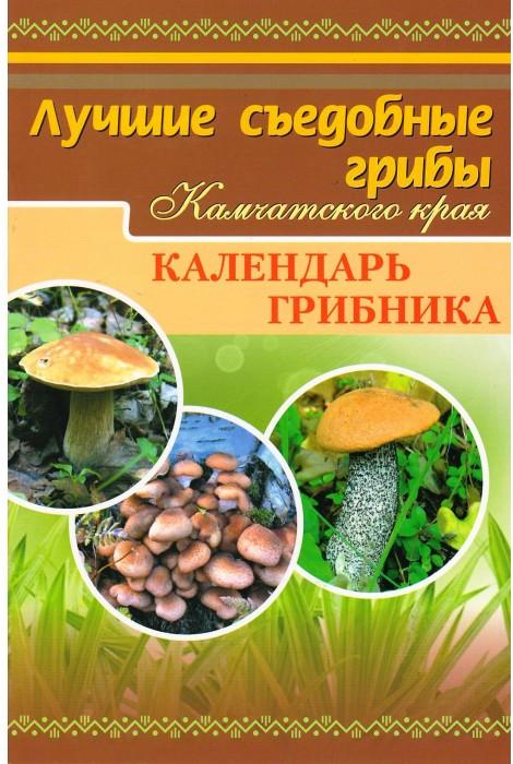 Лучшие съедобные грибы