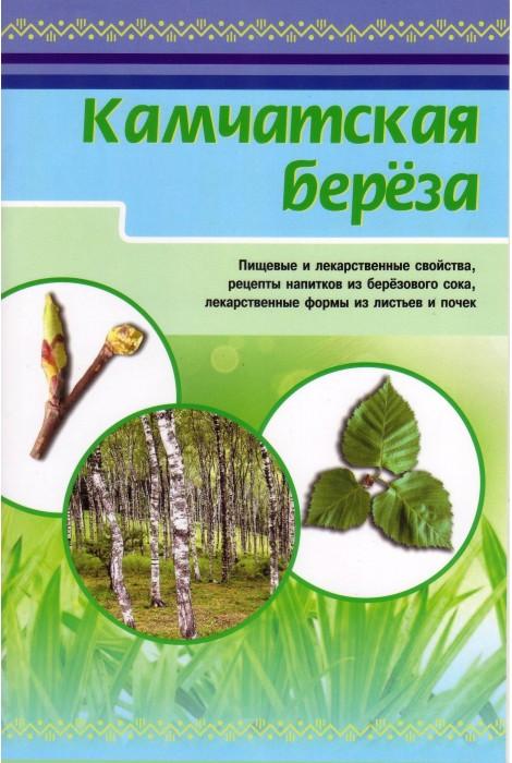 Камчатская берёза